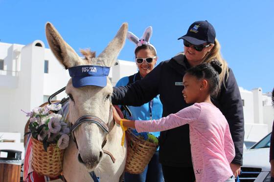 Kids entertainment - Feeding a pony in Club Mykonos