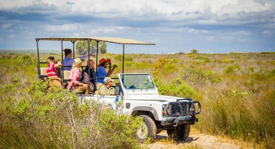 Ride in a jeep -Game Logde in Club Mykonos