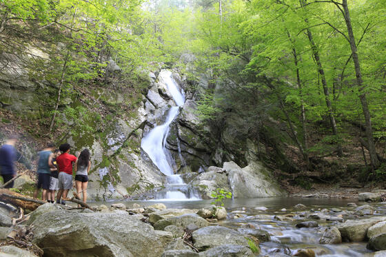 People admiring waterfall in woods