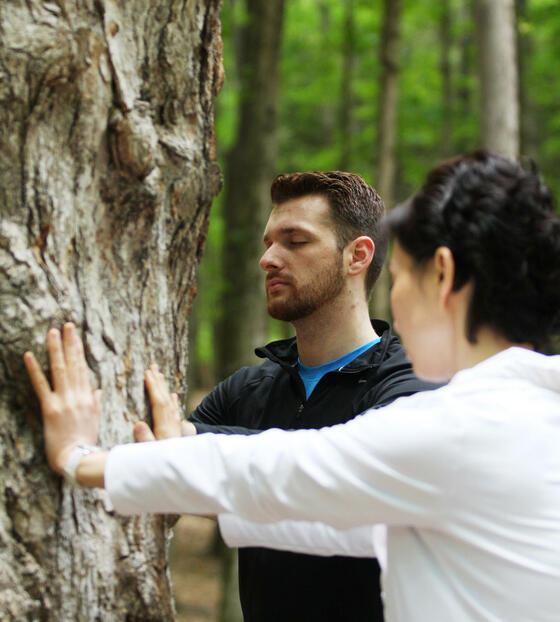 People touching tree during nature meditation healing