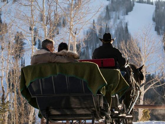 Winter Horse Drawn Sleigh Ride