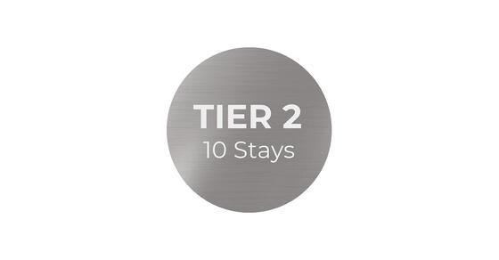 silver tier 2 logo