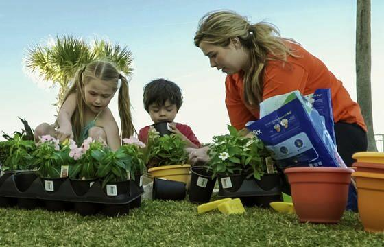 women and 2 small children (1 boy, 1 girl) planting small plants