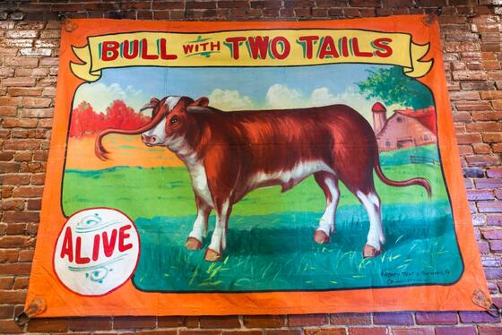 retro suites hotel bull with two tails hanging tapestry