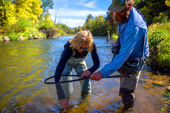 Fly Fishing in the Blue Ribbon Streams
