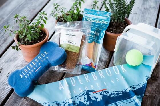 A hamper with pet products in Alderbrook Resort and Spa