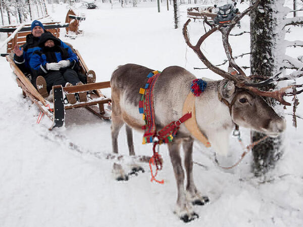 Reindeer activities at Northern Lights Village in Saariselkä, La