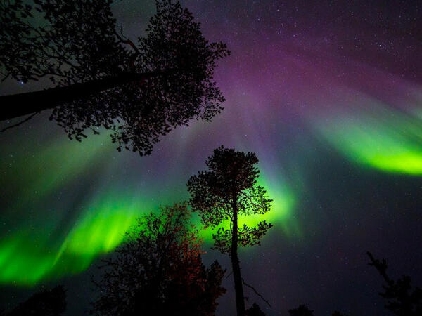 Aurora Borealis view from Northern Lights Village in Saariselkä,