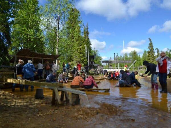 Activities at Northern Lights Village in Saariselkä, Lapland, Fi
