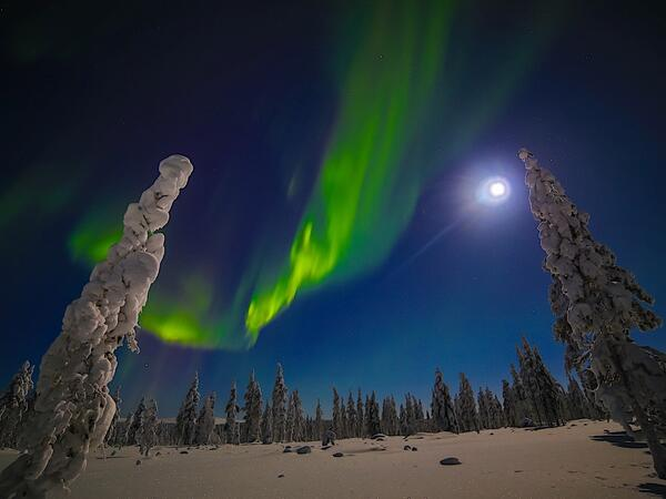 Northern Lights Village in Saariselkä, Lapland