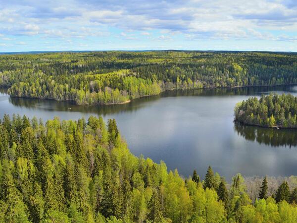Landscape near Northern Lights Village in Saariselkä, Lapland