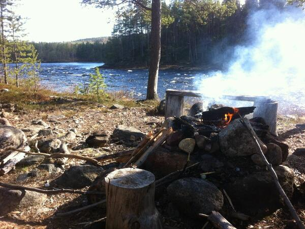 Activities near Northern Lights Village in Saariselkä, Lapland
