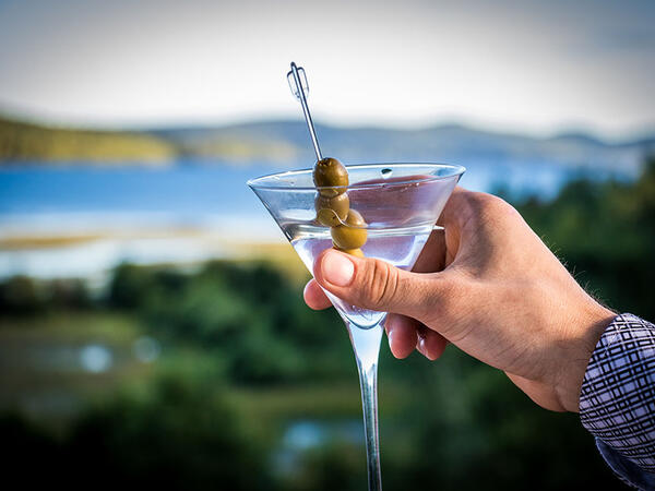 Martini dans Auberge du Lac Taureau, The Originals Relais