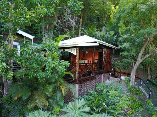 cottage in tropical rainforest