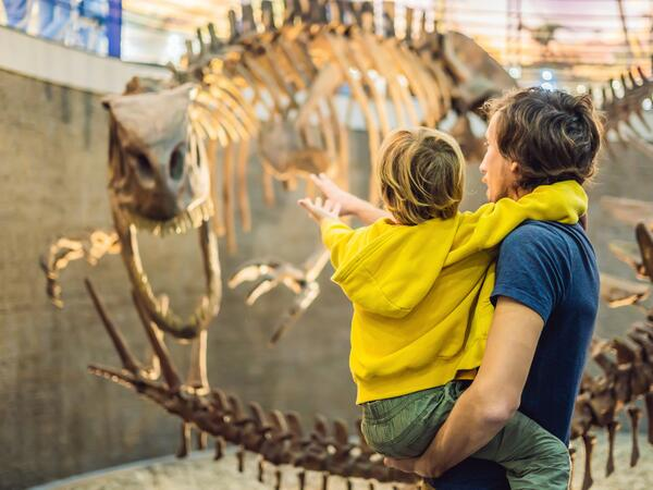 A father and a son looking at a skeleton of a dinosaur