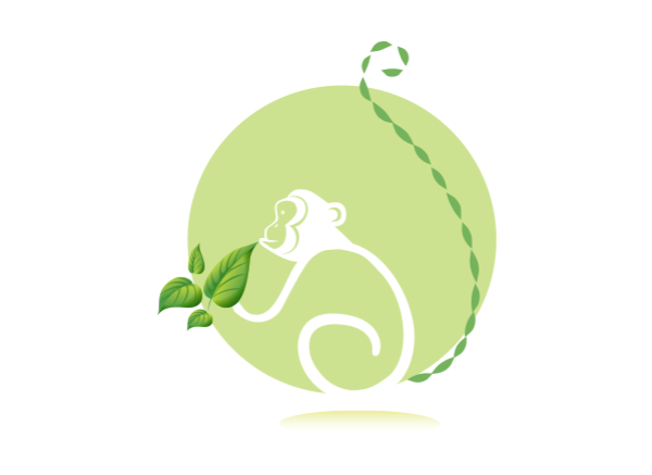 Summit Rainforest Spa & Golf Logo