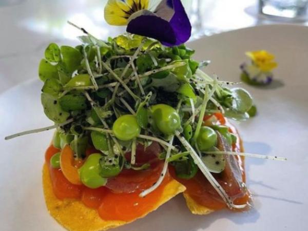 Leku restaurant colorful Meal