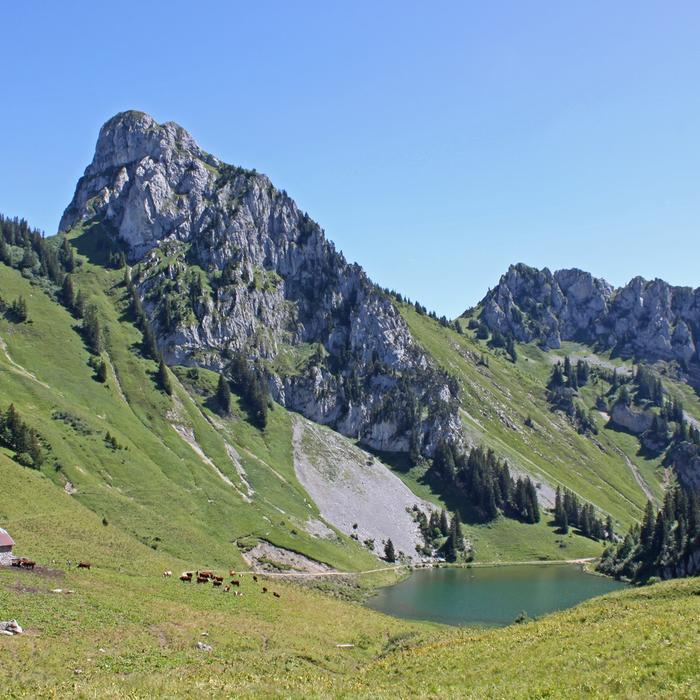 Photo du lac d'Arvouin et de la montagne en été