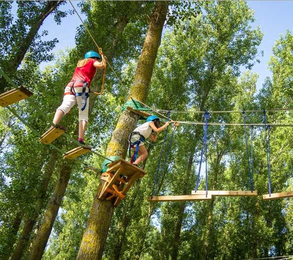 Des enfants dans les arbres faisant de l'accrobranche