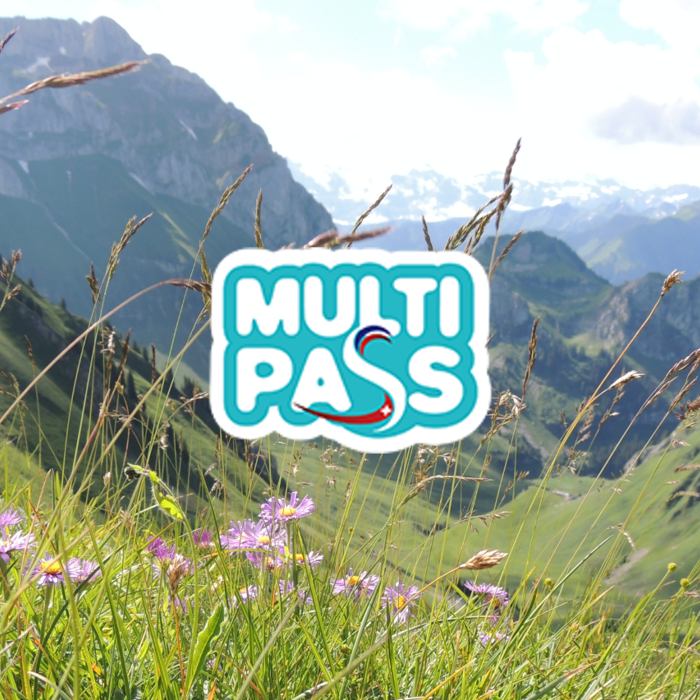 Logo MultiPASS Les Portes du Soleil avec fond de montagne été