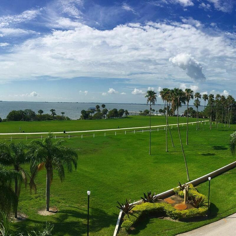 Wide lawns and palm trees overlooking the bay.
