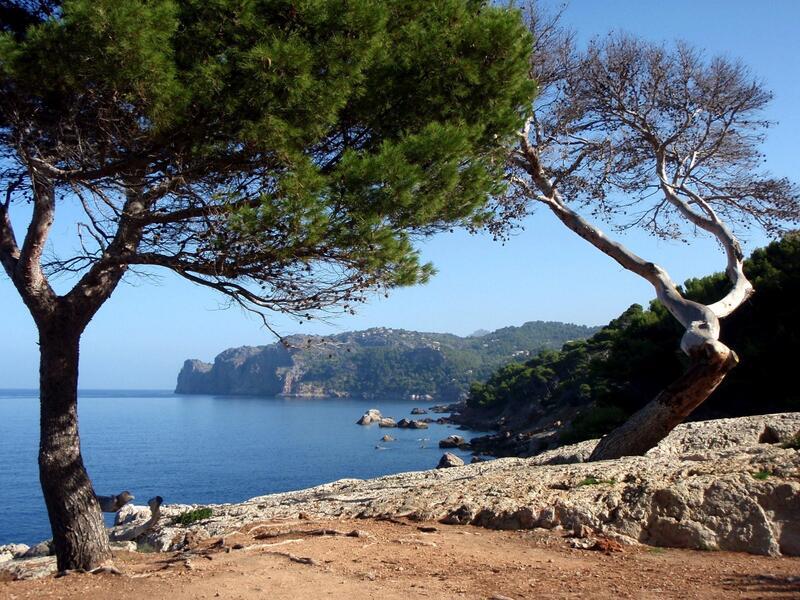 Senderismo cerca del Hotel Aimia en Port de Sóller, Mallorca