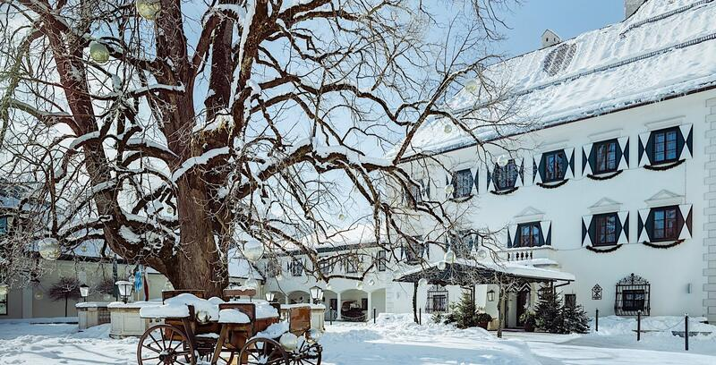 Winterliche Linde im Schloss Pichlarn