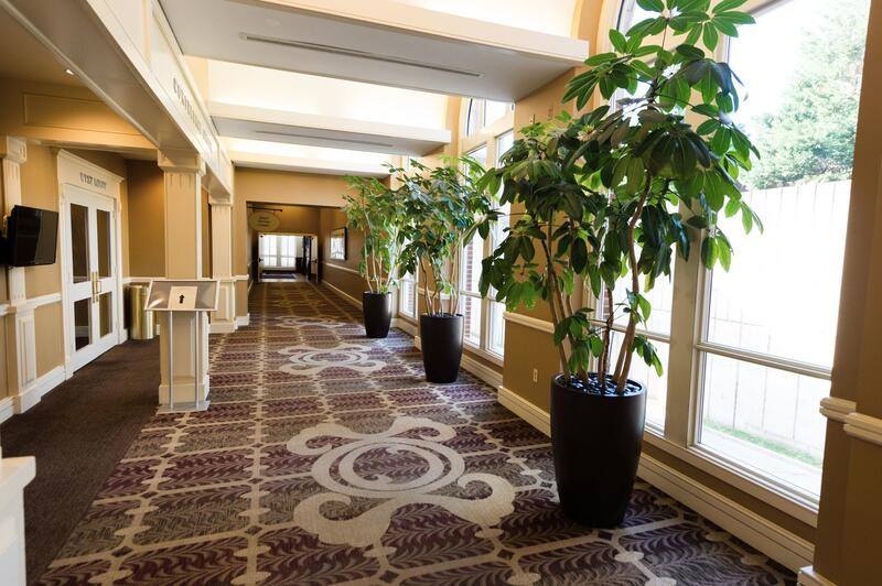 hallway with windows and plants