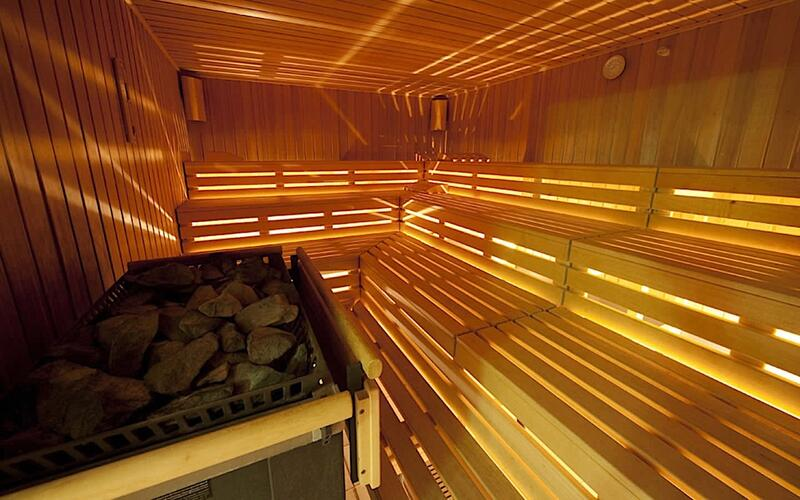 Sauna at Airport Hotel Basel