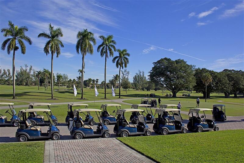 golf carts lined up on path