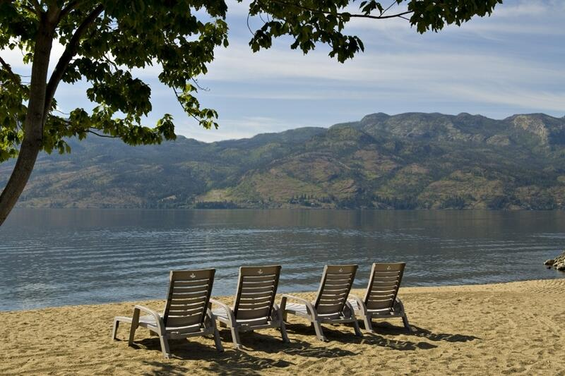 Cove Beach Lounge Chair