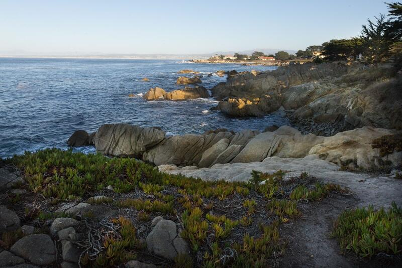 monterey landscape overlooking sea