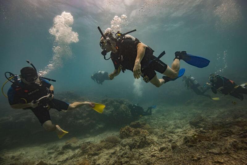Diving Activity at Heron Island