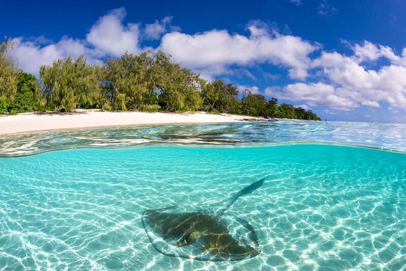 Shark Bay Heron Island