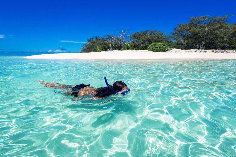Snorkelling  at Shark Bay Heron Island