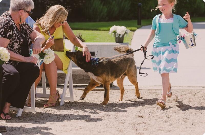 Dog During Weddings