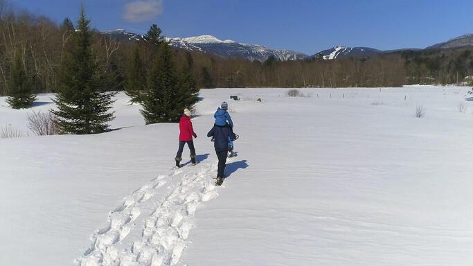Three friends walking through the Vermont snow.