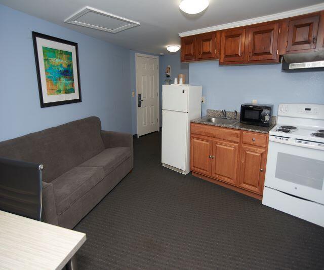 Kitchen Area in Apartment Suite