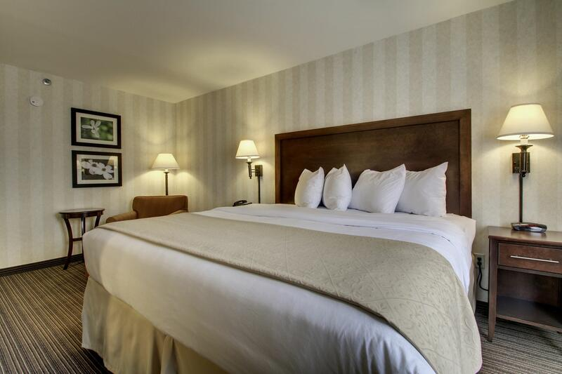 standard king room bed