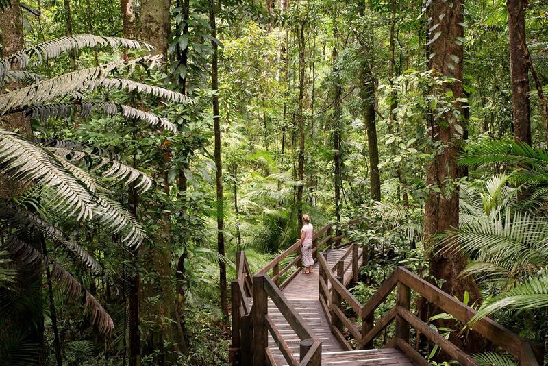 Forest Patch near Silkari Hotels