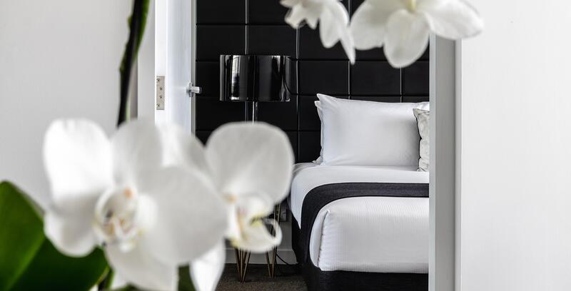 Guest Room at Silkari Suites at Chatswood