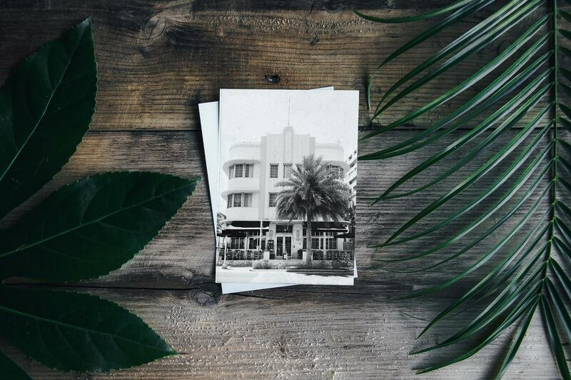 old photo of white building on wooden table with tree branches