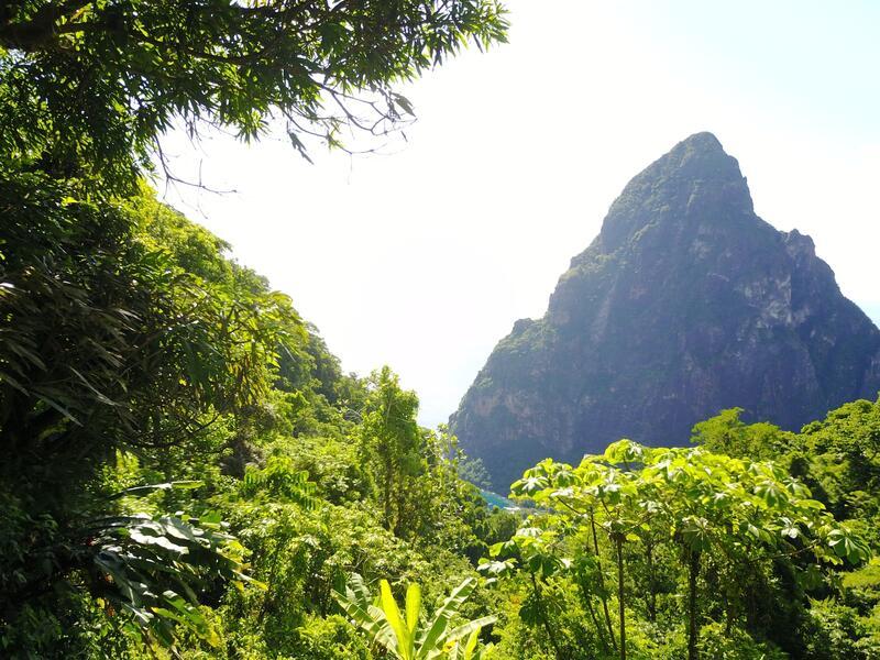 mountain over the rainforest
