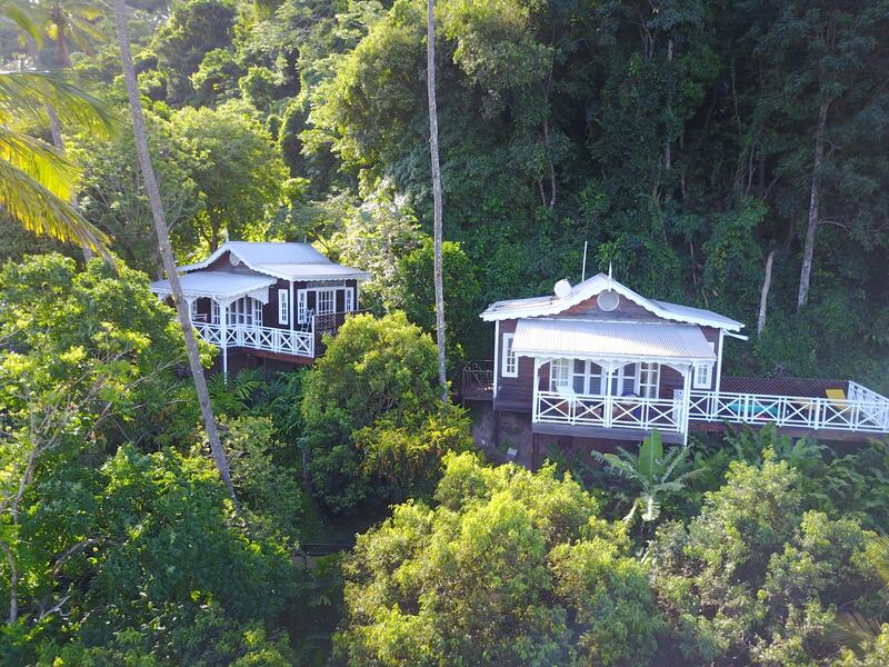 cottages in tropical rainforest