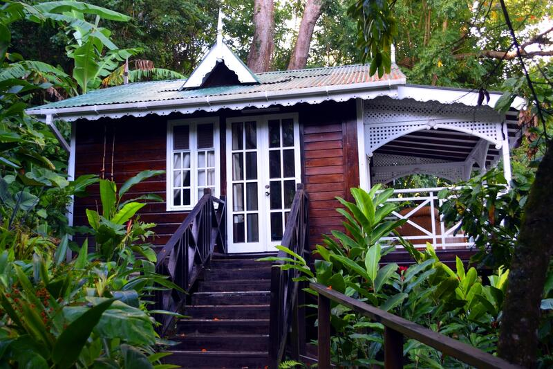 red cottage in rainforest