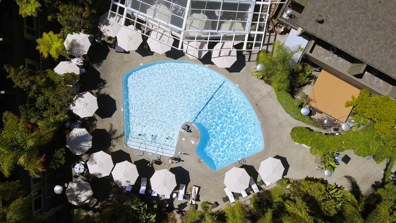 birds eye view of outdoor swimming pool