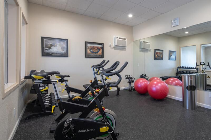 Spin Bikes, Free Weight, Bench, Kettle Bells, Yoga Balls
