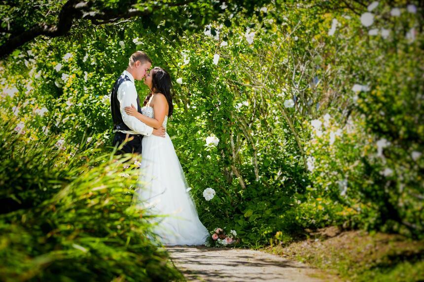 weddings at Painter's Lodge Resort