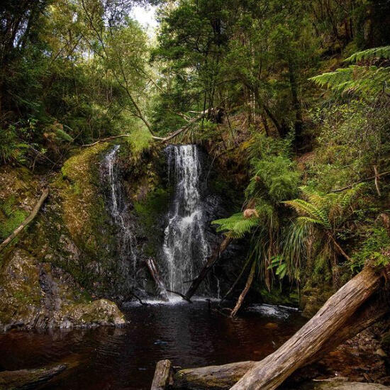Waterfall at the Tasmanian Wilderness  near the Strahan Village