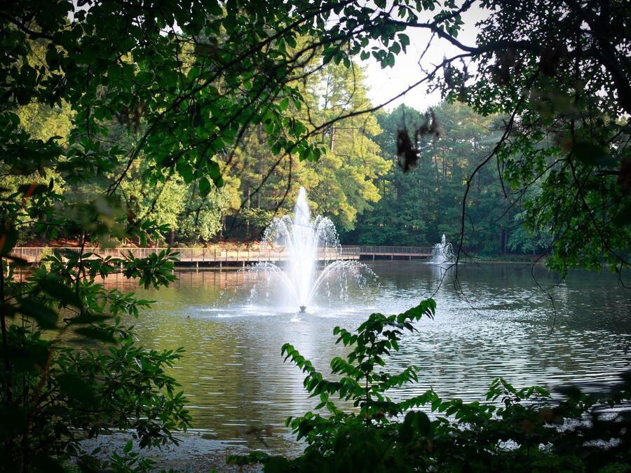 Lake and Fountain 2